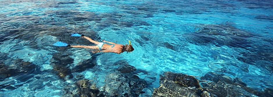 snorkeling-bonaire