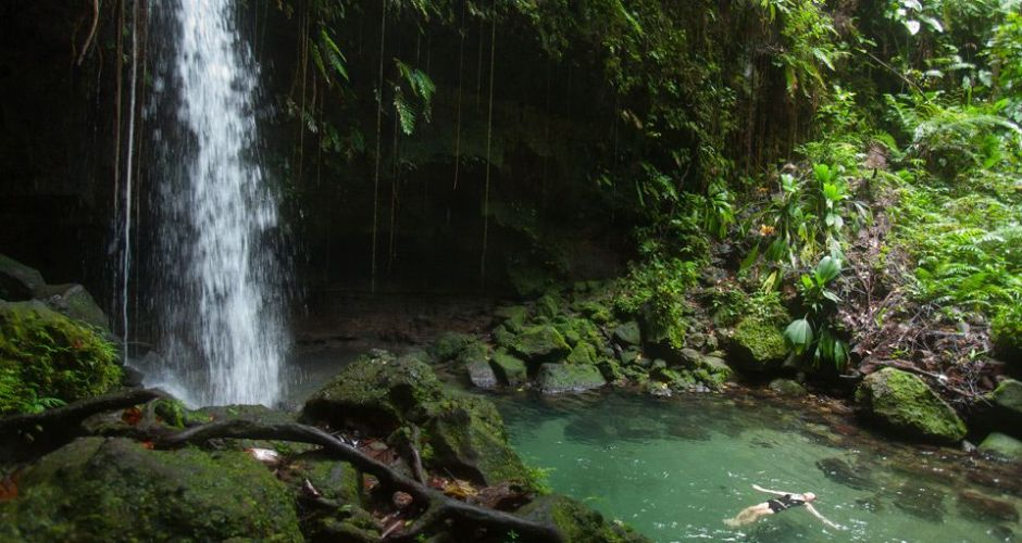 dominica-vacations