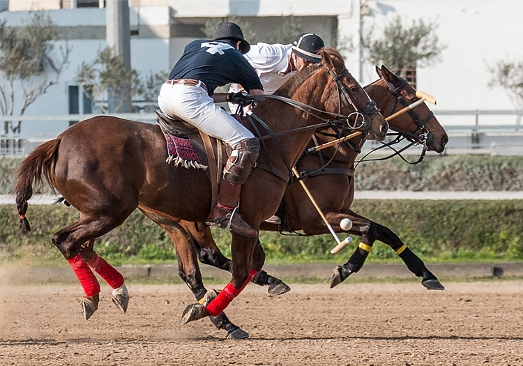 the-spencer-cup-2015-malta-polo-club